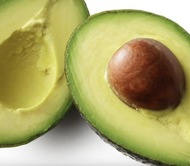 Can a rabbit eat avocado?