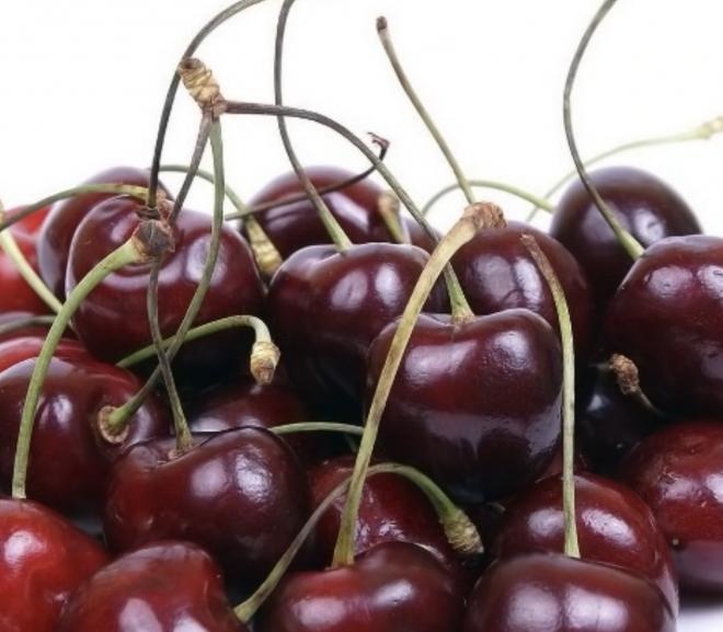Can a rabbit eat cherries?