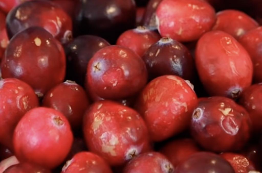 Can a rabbit eat cranberries?