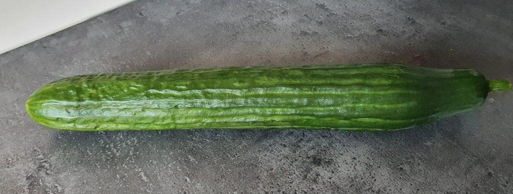 Can a rabbit eat cucumber?