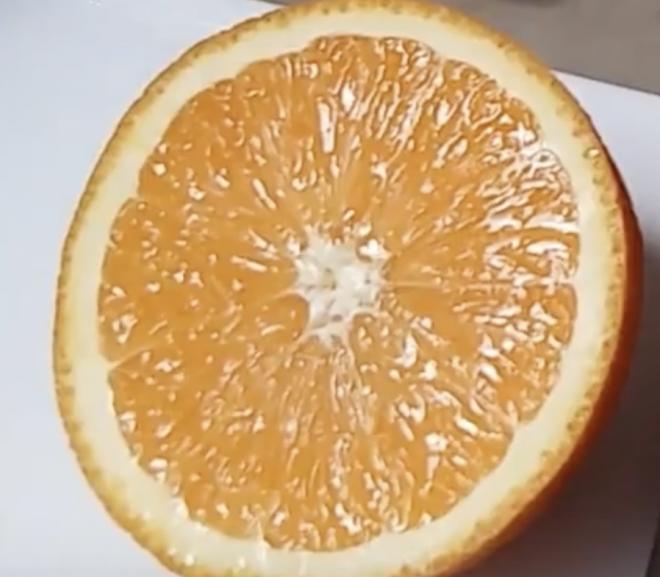 Can a rabbit eat oranges?